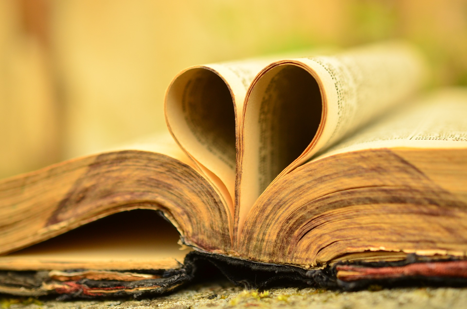 Word of the Year - A Bibliophile's Journey Through the Past